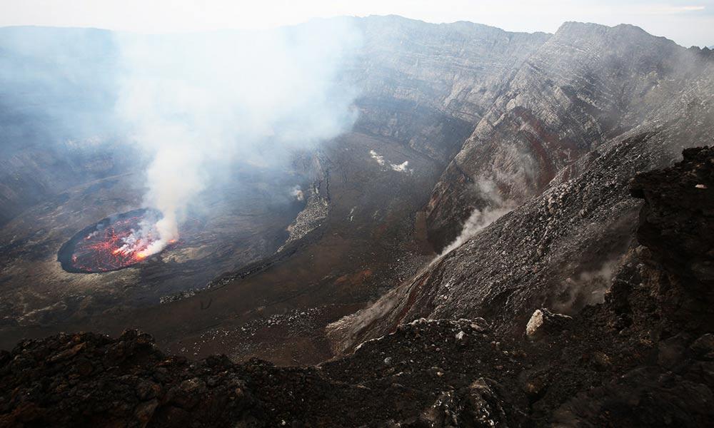 Le Petit Virunga (Bukima) Package