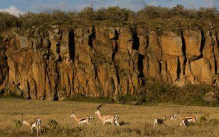3 Days Lake Naivasha and Hell's Gate Safari