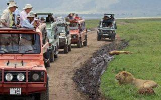 4 Days Ngorongoro Crater Safari