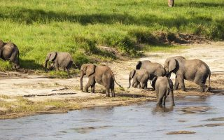 9 Days Tanzania Classic Safari