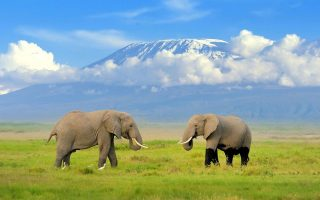 How to get to Amboseli National Park