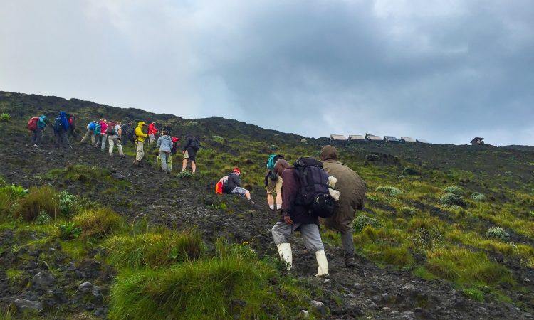 6 Days Nyiragongo hike and Bwindi Gorilla from Kigali