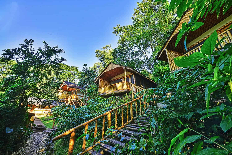 Bwindi Forest National Park Uganda Accommodation